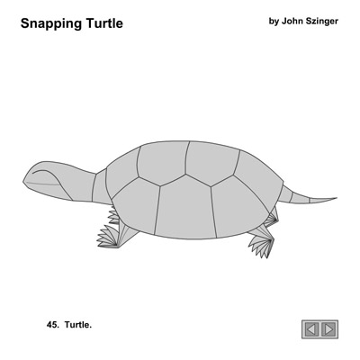 Origami Snapping Turtle Diagram House Wiring Diagram Symbols